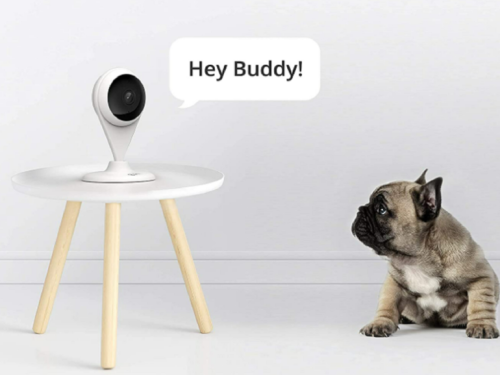 360 AC1C indoor security camera review: Low-cost security camera that is simple to set up and use Review | ZDNet