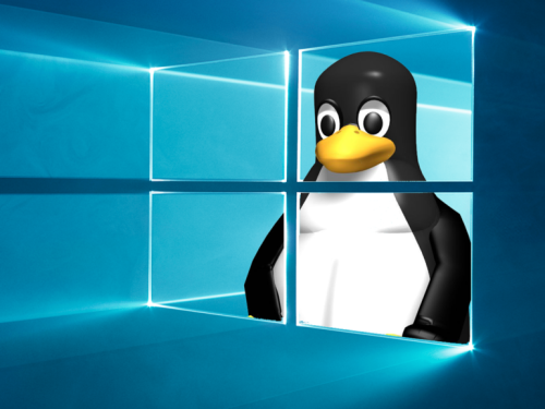 Porting Linux's eBPF to Windows 10 and Windows Server | ZDNet