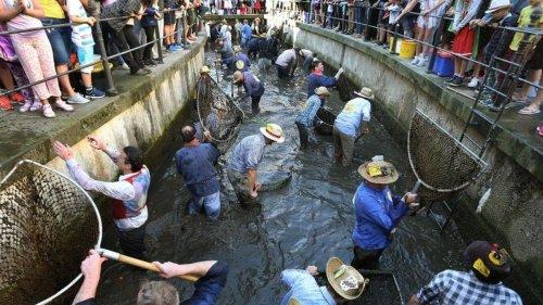 Gerichtsprozess: Diskriminierung bei Brauchtums-Fischen: Urteil erwartet