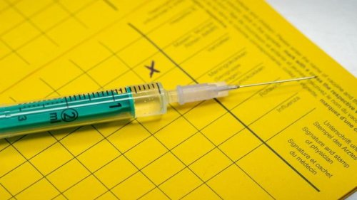 Medizin: Hausärzteverband mahnt Grippeimpfung an: Zahlen steigen