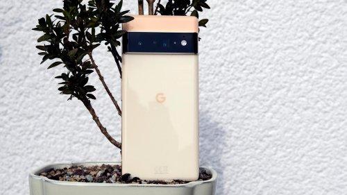 Google Pixel 6: Die Fotobombe