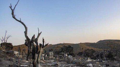 Land hat 66 Flüchtlinge von griechischen Inseln aufgenommen