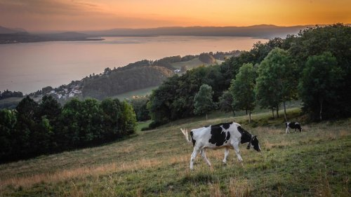 Schweizer stimmen gegen Klimaschutzgesetz