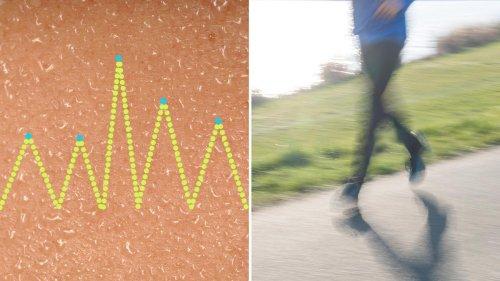 So gesund ist Laufen – und so ungesund
