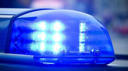 Rehkitze mit Traktor schwer verletzt: Erschossen