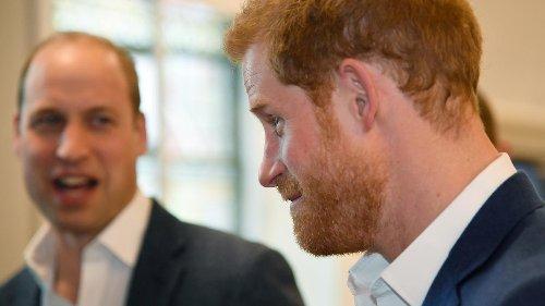William und Harry: Wer Geschwister hat, wird nie erwachsen