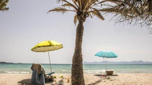 Erstes Kreuzfahrtschiff in Mallorca seit 15 Monaten