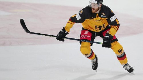 Früherer NHL-Verteidiger Holzer verstärkt Adler Mannheim