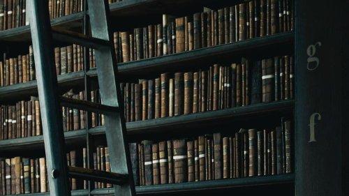 Kistenweise Ärger um die Schulbibliothek des Gymnasiums Blankenese