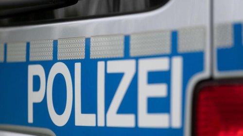 Polizei im Eichsfeld sucht gestohlene Kangal-Hündin