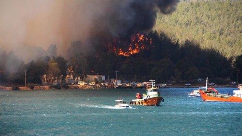 Hitzewelle: Großteil der Waldbrände in der Türkei offenbar unter Kontrolle