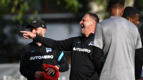 Fußball: Hertha-Interesse an Cornet: Dardai zufrieden mit Neuen
