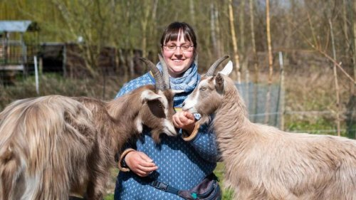 Tiere: Therapie mit Ziegen stärkt Selbstvertrauen