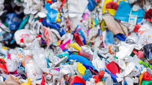 Abfall: Waste-Watcher bitten immer mehr Müllsünder zur Kasse