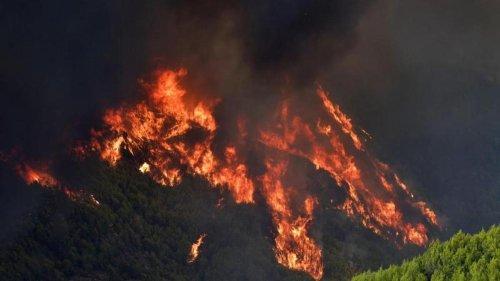 Umweltkatastrophen: Europas Urlaubsparadiese kämpfen gegen Brände
