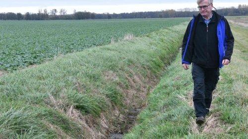 Agrar: Moore in Brandenburg schützen: Bauern machen Vorschläge