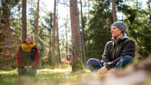 Staunen und Entspannen im Wald: Trainer öffnen den Blick
