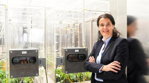 Gesundheit: Forscher schmieden Allianz im Kampf gegen Corona