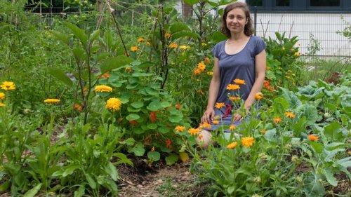 Freizeit: Gärtnern in der Stadt boomt: Corona befeuert Urban Gardening
