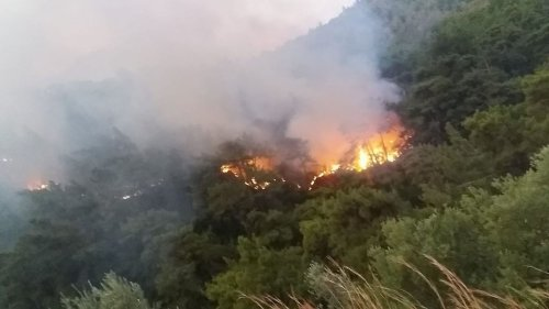 VIDEO: Kurdish Group Reportedly Claims Responsibility For Wildfires In Turkey - Zenger News