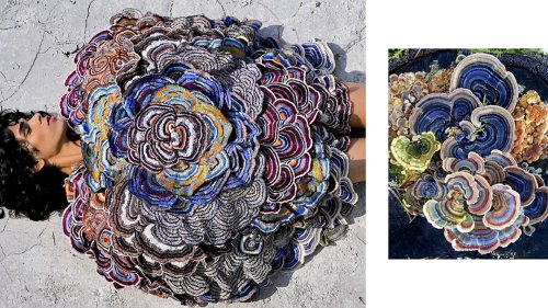 Mushrooms That Thrive In Decay Inspire Indian Designer's Show - Zenger News