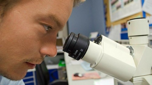 Cancer-fighting Cells Can Become Harmful Double Agents - Zenger News