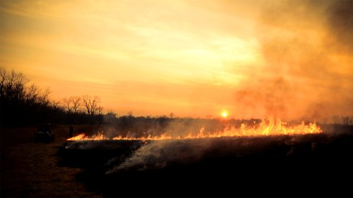 Fire Rages For More Than 10 Days In UNESCO Biosphere Reserve - Zenger News