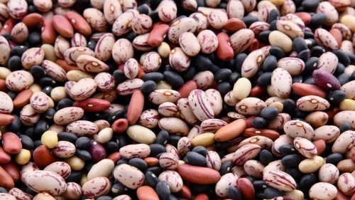 Bean Counters: Legume's Versatility Is Key To Delicious Mexican Cuisine - Zenger News