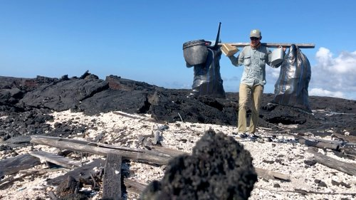 VIDEO: Trail Of Trash: Heartbreak Of Five Tons Of Plastic Junk Cleared From Galapagos Islands - Zenger News