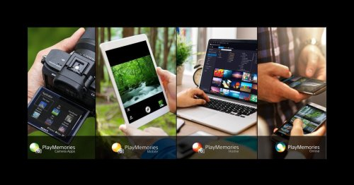 Shoot, Review, Organize Share With PlayMemories