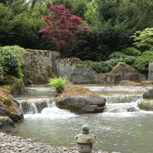 Besser als Olympia: Japanische Gärten