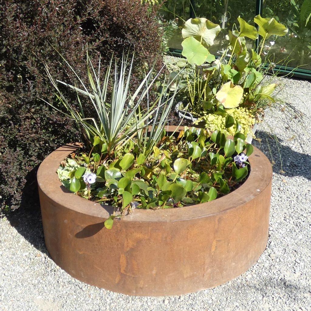 Zirol - die schönen Seiten des Gartens - cover