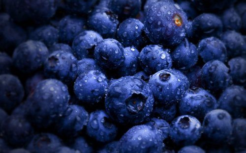 What if the Earth was made of blueberries?